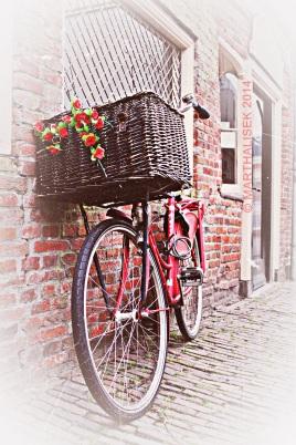 Sundaybike 4
